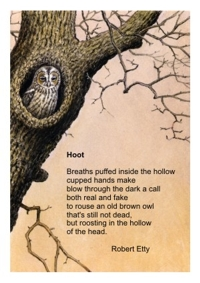 Hoot poem card