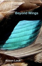 Beyond Wings, cover