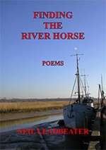 Finding the River Horse cover