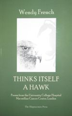 Thinks Itself a Hawk cover